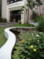 40 años de éxitos del Instituto de Ecología, A.C.