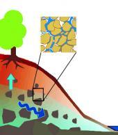El contenido de agua en el suelo: su importancia