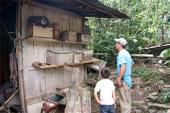 El meliponario del Jardín Botánico: un reflejo de la riqueza biocultural de Veracruz