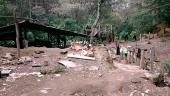 Santuario Bosque de Niebla: entre la biodiversidad y la irregularidad