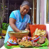 Calidad e maíces para alimentos tradicionales